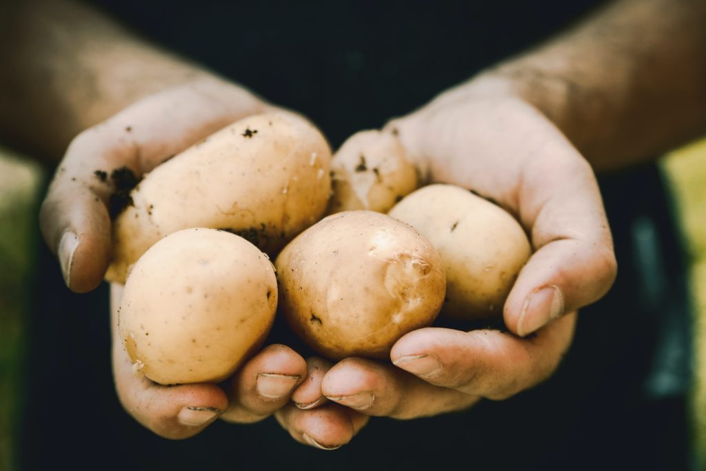 Potato: Foods You Should Not Refrigerate